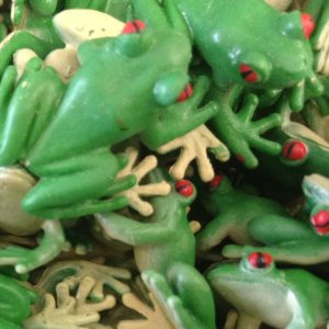 tiny toy tree frogs at United Supply.