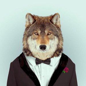 werewolfinatux-shawlcollarflowerfinal