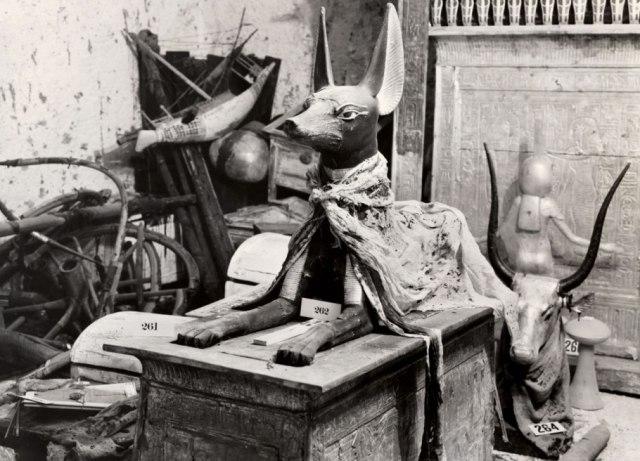 King Tut, ark in museum