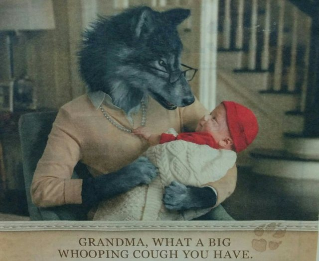 grandma-crop-blog