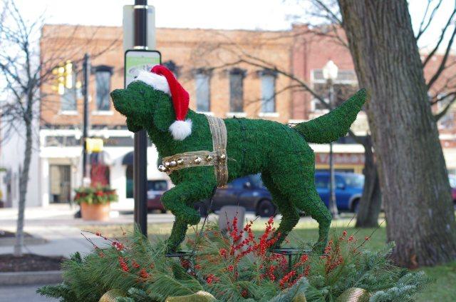 christmaswolves-photo4-blog