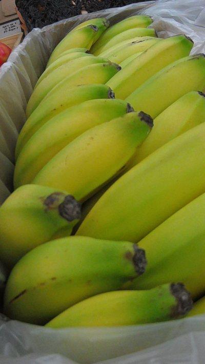 FILE0881-bananascrop-blog