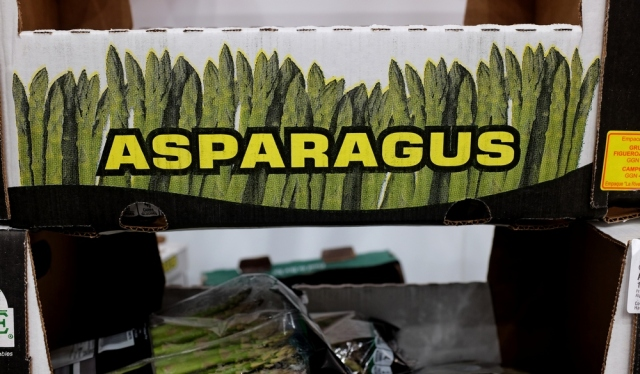 asparagus-blog