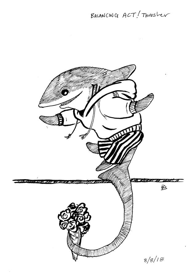 pajama shark week balancing act a cartoonist in kekionga